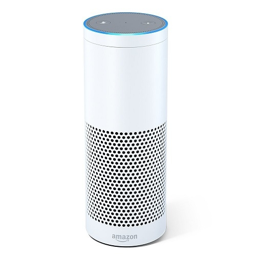 Amazon Echo Wit